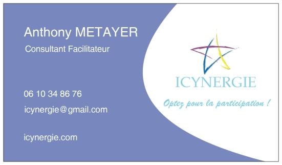 Icynergie Carte De Visite 2